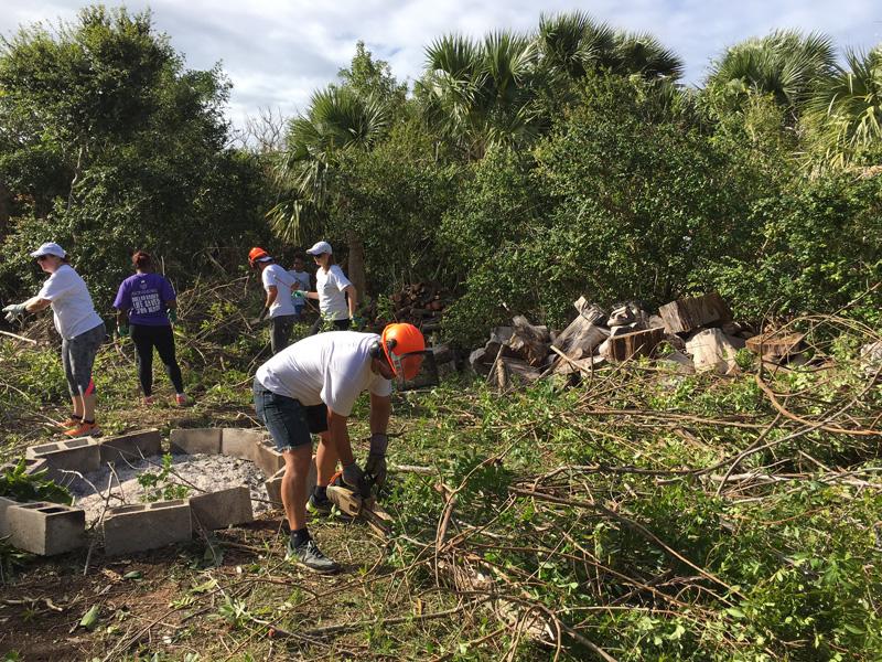 Artex at Trunk Island Bermuda Dec 2017 (1)