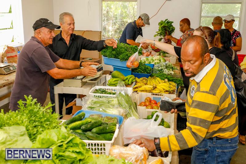 Bermuda-Farmers-Market-at-Botanical-Gardens-December-2-2017_2698