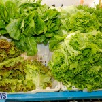 Bermuda Farmers Market at Botanical Gardens, December 2 2017_2700