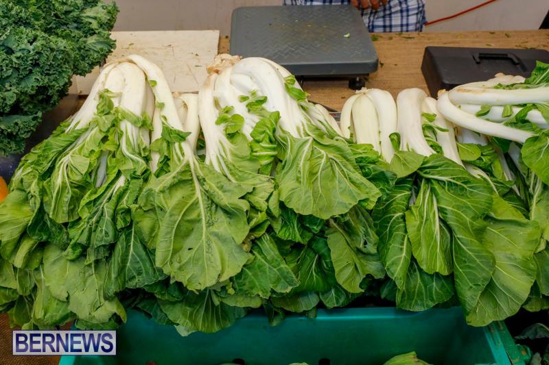 Bermuda-Farmers-Market-at-Botanical-Gardens-December-2-2017_2750