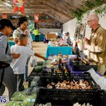 Bermuda Farmers Market at Botanical Gardens, December 2 2017_2766