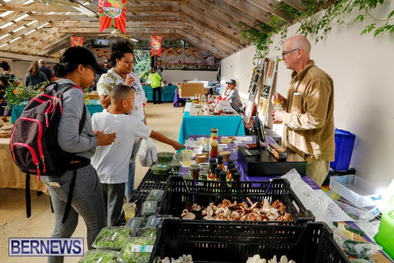 Bermuda-Farmers-Market-at-Botanical-Gardens-December-2-2017_2766