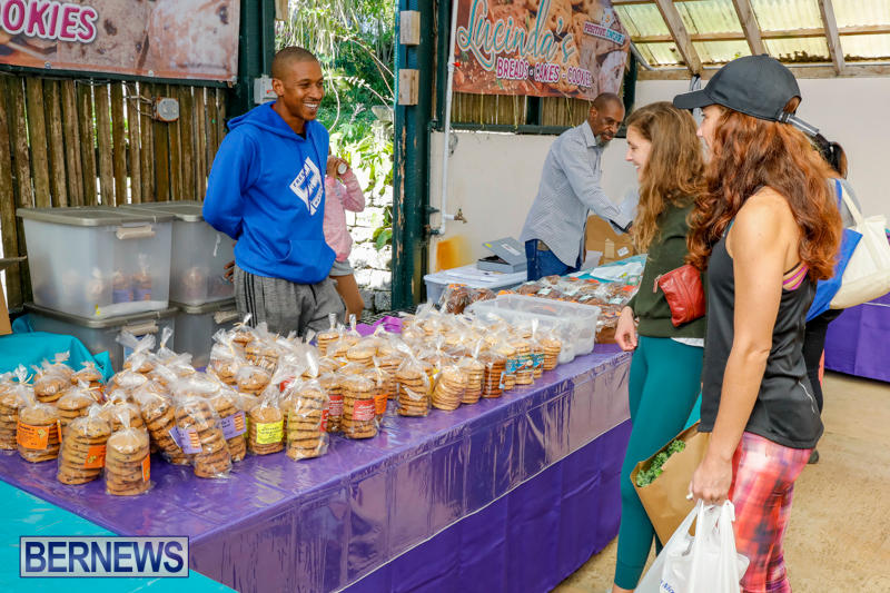 Bermuda-Farmers-Market-at-Botanical-Gardens-December-2-2017_2783