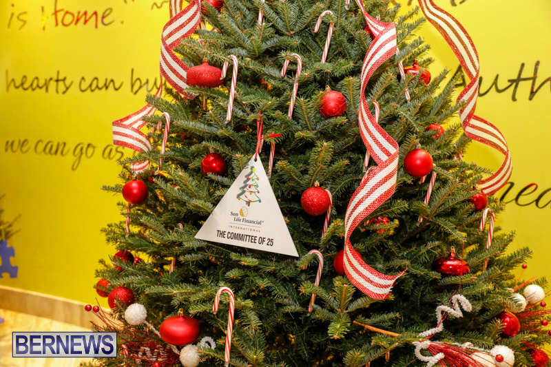 Charity-Christmas-Tree-Event-Washington-Mall-Bermuda-December-11-2017-4460