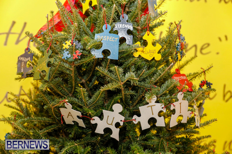 Charity-Christmas-Tree-Event-Washington-Mall-Bermuda-December-11-2017-4461