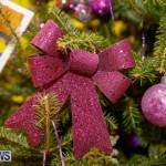 Charity Christmas Tree Event Washington Mall Bermuda, December 11 2017-4472