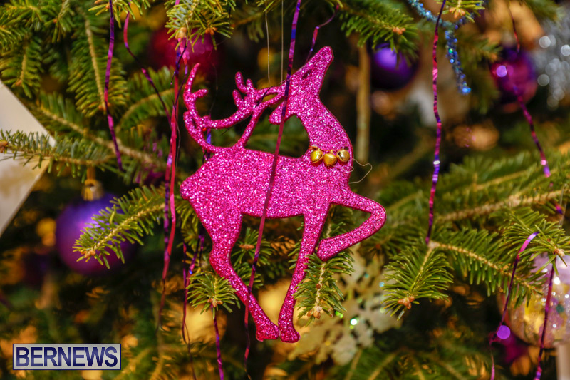 Charity-Christmas-Tree-Event-Washington-Mall-Bermuda-December-11-2017-4473