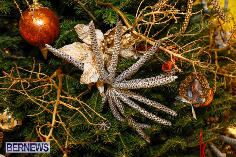 Charity-Christmas-Tree-Event-Washington-Mall-Bermuda-December-11-2017-4479