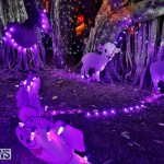 Festival of Lights Christmas Decorations Lights Bermuda, December 22 2017-7421