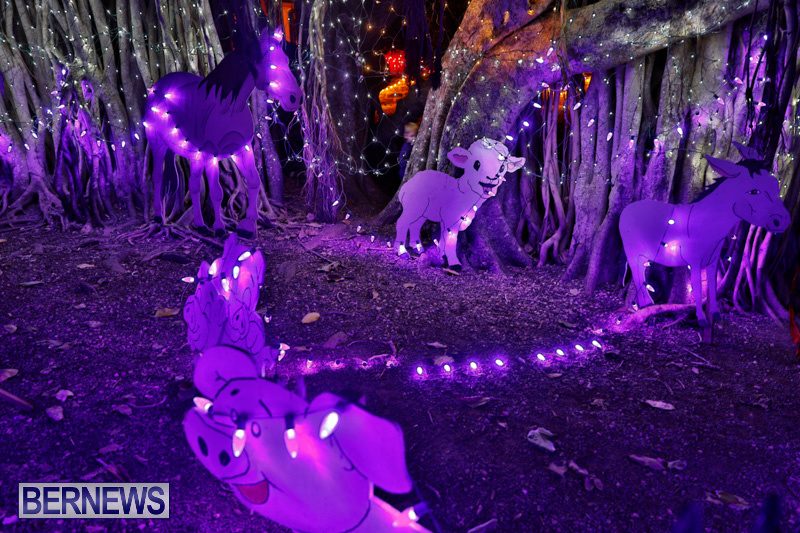 Festival-of-Lights-Christmas-Decorations-Lights-Bermuda-December-22-2017-7421