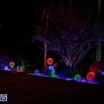 Festival of Lights Christmas Decorations Lights Bermuda, December 22 2017-7441