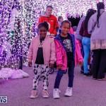 Festival of Lights Christmas Decorations Lights Bermuda, December 22 2017-7527