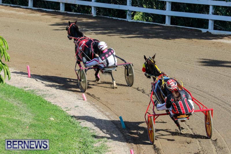 Harness-Pony-Racing-Bermuda-December-17-2017-5361