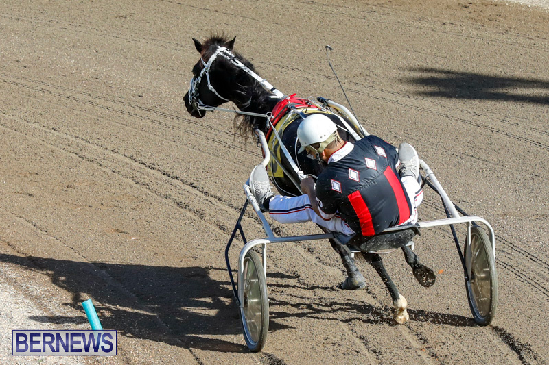 Harness-Pony-Racing-Bermuda-December-17-2017-5365