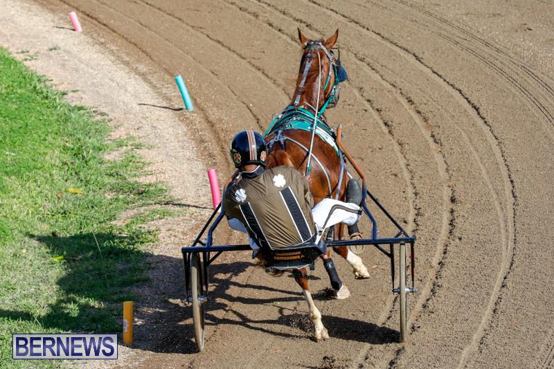 Harness-Pony-Racing-Bermuda-December-17-2017-5367