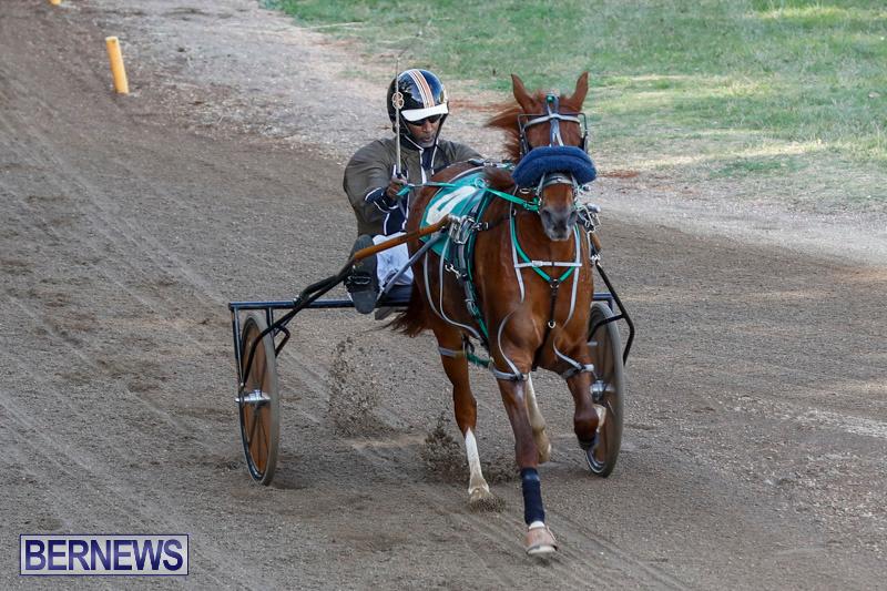 Harness-Pony-Racing-Bermuda-December-17-2017-5392