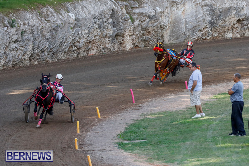 Harness-Pony-Racing-Bermuda-December-17-2017-5396