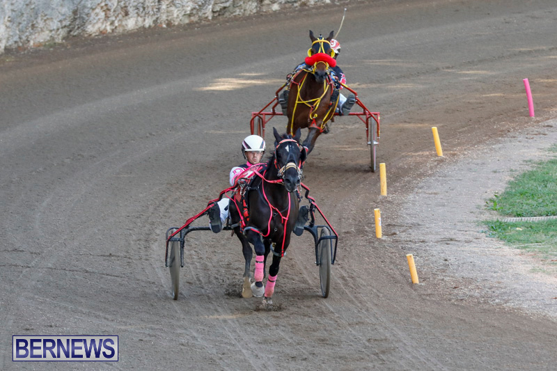 Harness-Pony-Racing-Bermuda-December-17-2017-5397