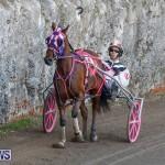 Harness Pony Racing Bermuda, December 17 2017-5420