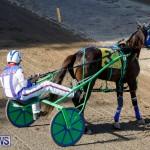 Harness Pony Racing Bermuda, December 17 2017-5423