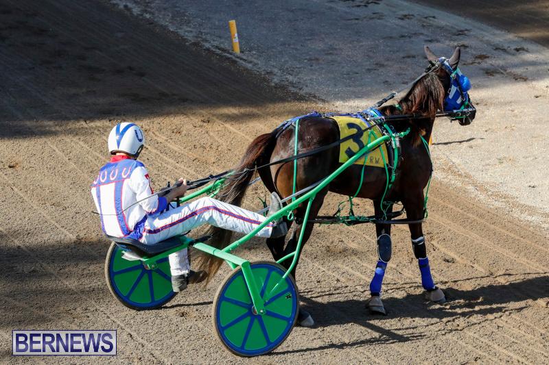 Harness-Pony-Racing-Bermuda-December-17-2017-5423