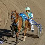 Harness Pony Racing Bermuda, December 17 2017-5426