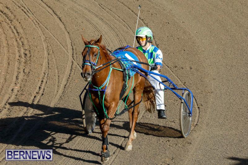 Harness-Pony-Racing-Bermuda-December-17-2017-5426