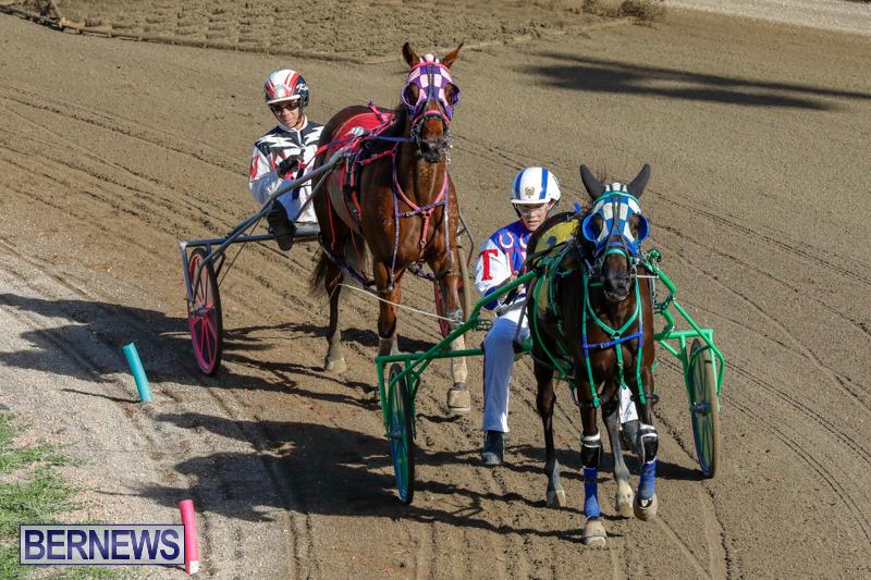 Harness-Pony-Racing-Bermuda-December-17-2017-5437