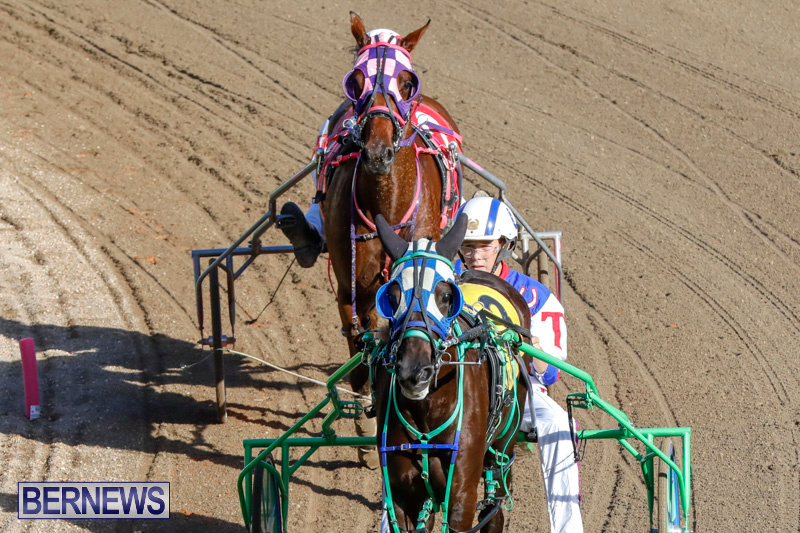 Harness-Pony-Racing-Bermuda-December-17-2017-5440