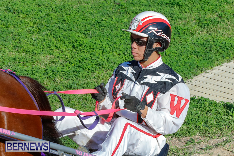 Harness-Pony-Racing-Bermuda-December-17-2017-5451
