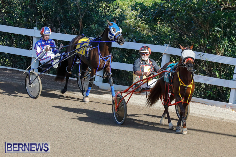 Harness-Pony-Racing-Bermuda-December-17-2017-5456