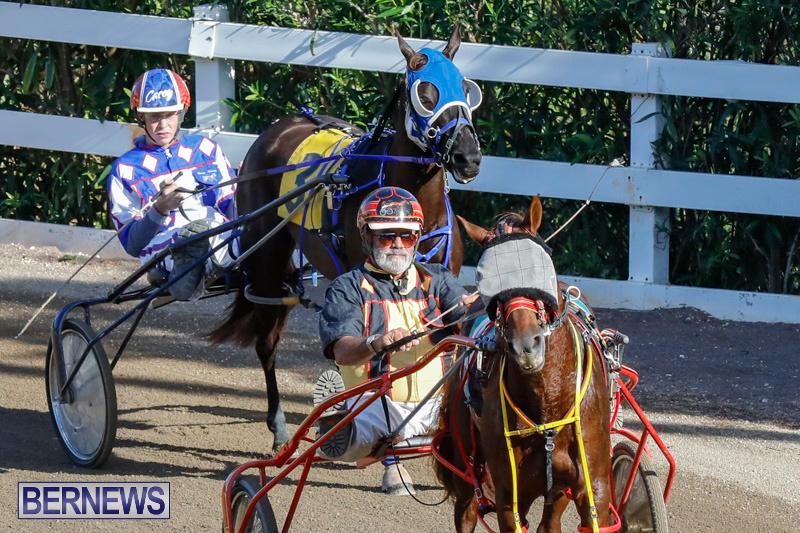 Harness-Pony-Racing-Bermuda-December-17-2017-5462