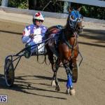 Harness Pony Racing Bermuda, December 17 2017-5466