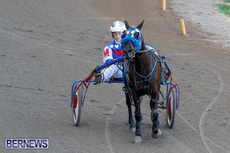 Harness-Pony-Racing-Bermuda-December-17-2017-5478