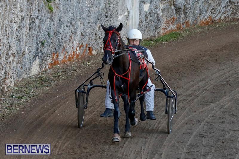 Harness-Pony-Racing-Bermuda-December-17-2017-5482