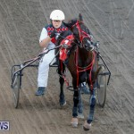 Harness Pony Racing Bermuda, December 17 2017-5489