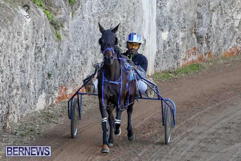 Harness-Pony-Racing-Bermuda-December-17-2017-5495