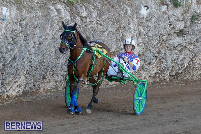 Harness-Pony-Racing-Bermuda-December-17-2017-5504