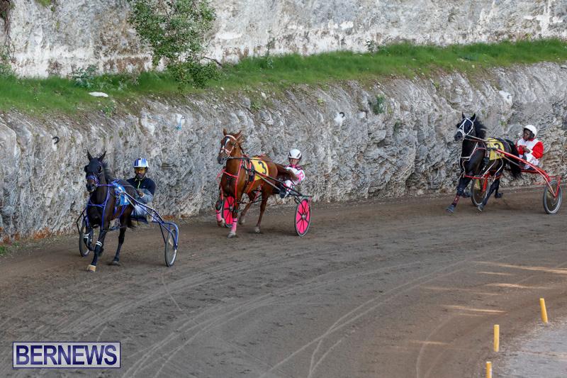 Harness-Pony-Racing-Bermuda-December-17-2017-5526