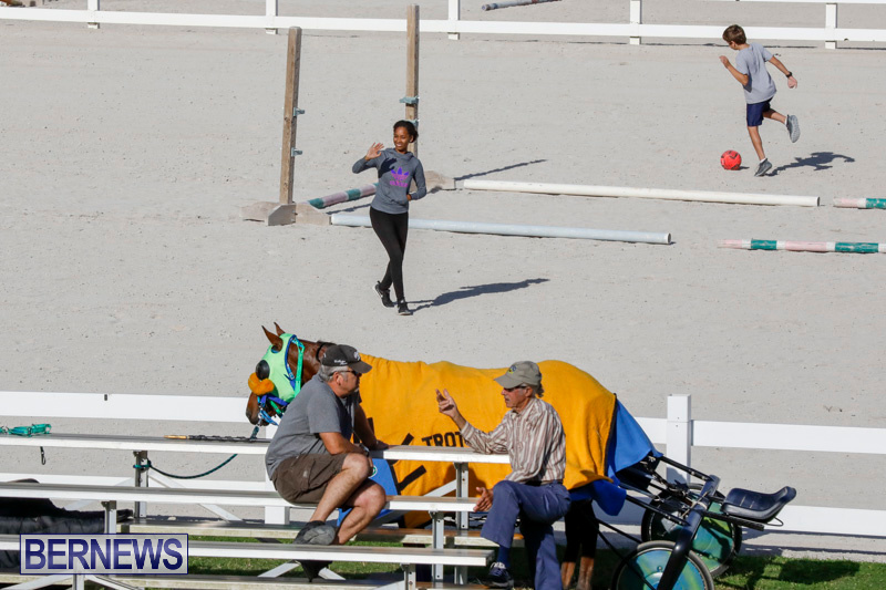 Harness-Pony-Racing-Bermuda-December-17-2017-5571