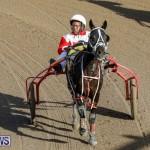 Harness Pony Racing Bermuda, December 17 2017-5584