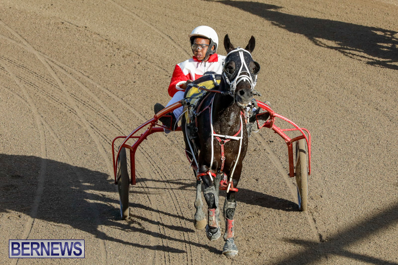 Harness-Pony-Racing-Bermuda-December-17-2017-5584