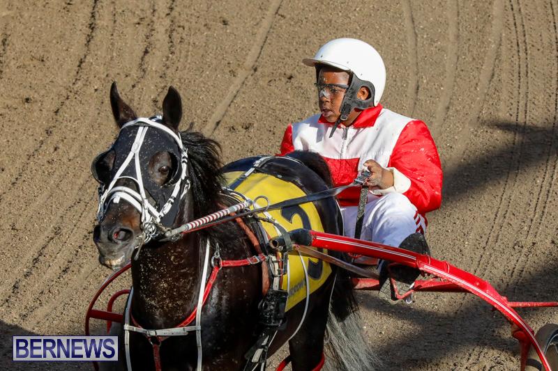 Harness-Pony-Racing-Bermuda-December-17-2017-5588