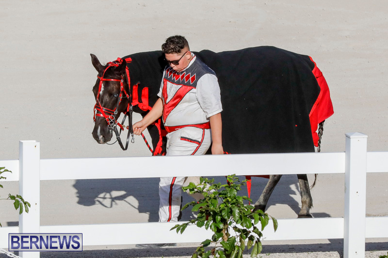 Harness-Pony-Racing-Bermuda-December-17-2017-5603