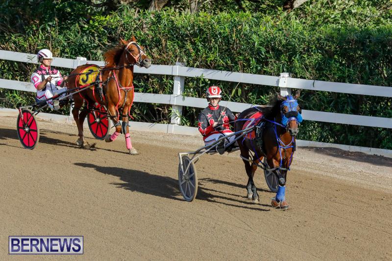 Harness-Pony-Racing-Bermuda-December-17-2017-5619