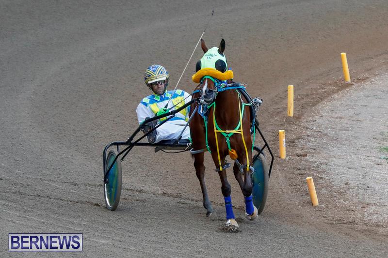 Harness-Pony-Racing-Bermuda-December-17-2017-5624