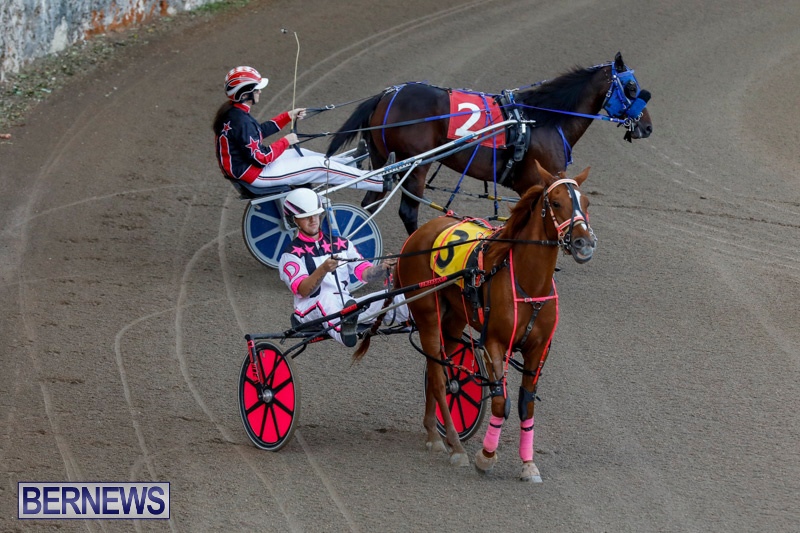 Harness-Pony-Racing-Bermuda-December-17-2017-5627