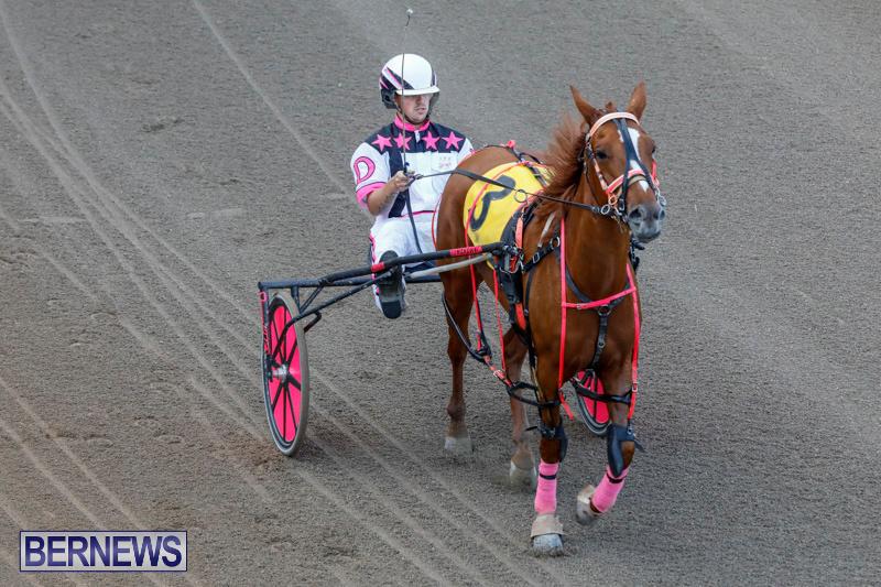 Harness-Pony-Racing-Bermuda-December-17-2017-5635