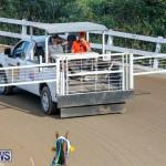 Harness Pony Racing Bermuda, December 17 2017-5641