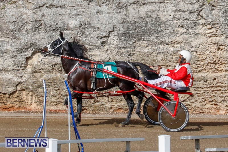 Harness-Pony-Racing-Bermuda-December-26-2017-8140